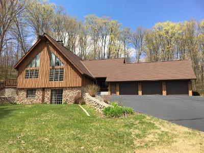 Antigo WI Single Family Home For Sale: $325,000