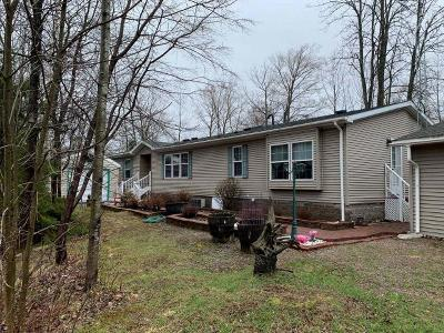 Forest County, Iron Wi County, Langlade County, Lincoln County, Oneida County, Vilas County Single Family Home For Sale: 4851 Ham Lake Dr