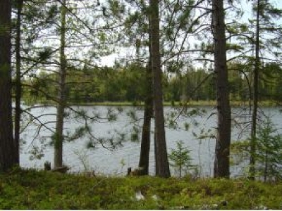 Residential Lots & Land For Sale: On Berendsen Lake Rd