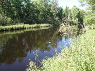 Rhinelander Residential Lots & Land For Sale: Lots 3&4 Murmuring Pines Tr