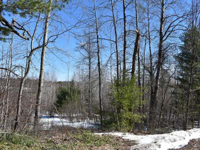 Residential Lots & Land For Sale: On Pine Rd S #Lot1