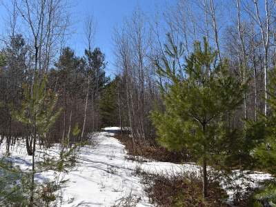 Residential Lots & Land For Sale: N10246 Pine Rd S #Lot2