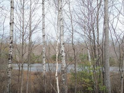 Residential Lots & Land For Sale: Lot 1 Beaver Lodge Rd