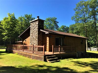 Minocqua Single Family Home For Sale: 11240 Wolfs Rd