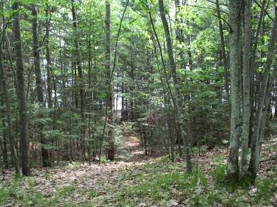 Residential Lots & Land For Sale: 8278 Big St Germain Dr
