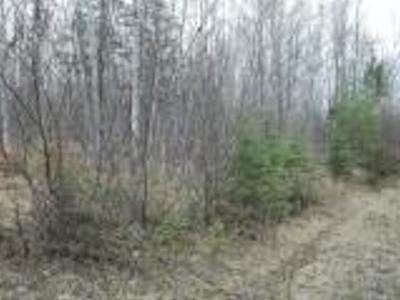 Park Falls Residential Lots & Land For Sale: On Cth E