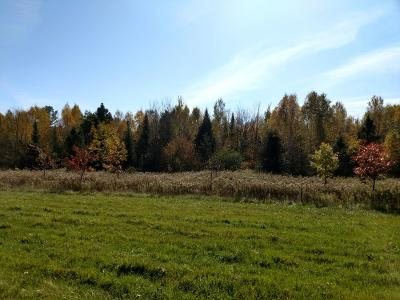 Prentice Residential Lots & Land For Sale: W3598 Nyberg Hill Rd