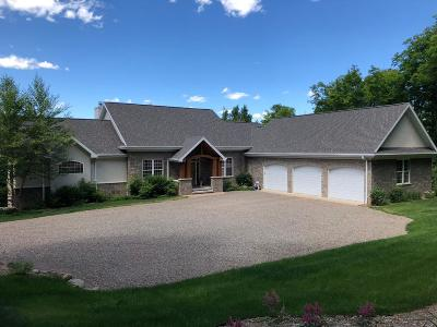 Vilas County Single Family Home For Sale: 950 Deer Path