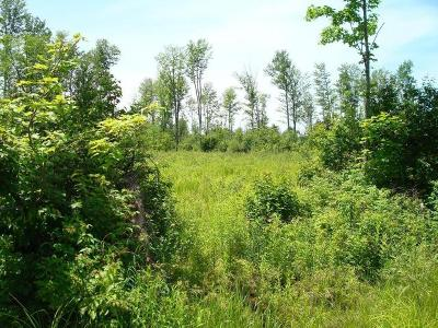 Antigo Residential Lots & Land For Sale: On Peterson Rd #320 Acre