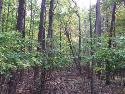 Residential Lots & Land For Sale: On Lorann Dr