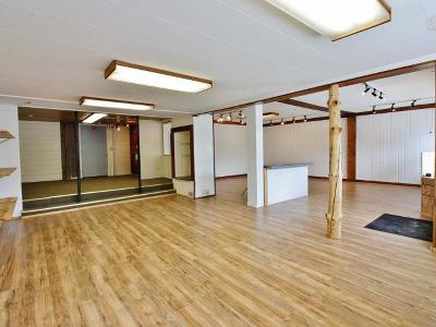 Three Lakes Commercial For Sale: 1799 Superior St