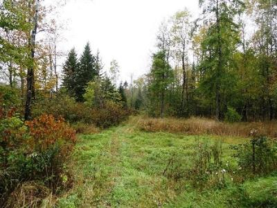 Merrill Residential Lots & Land Active Under Contract: Near Cth E #122 acre