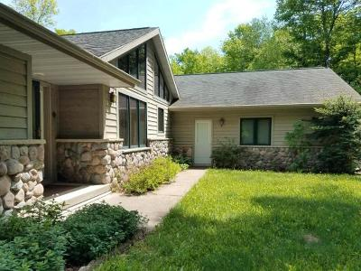 Elcho Single Family Home For Sale: N11602 Schuett Ln