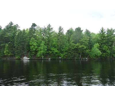 Three Lakes WI Residential Lots & Land For Sale: $225,000