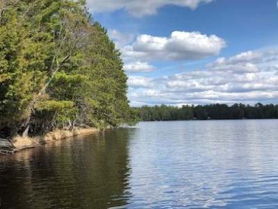 Three Lakes WI Residential Lots & Land For Sale: $249,000