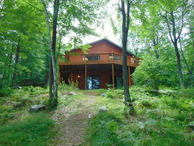 Lincoln County, Price County, Oneida County, Vilas County Single Family Home For Sale: 8308 Big Fish Rd
