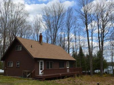 Minocqua Single Family Home For Sale: 8524 Squaw Lake Rd W