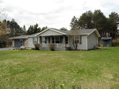 Tomahawk WI Single Family Home For Sale: $142,500