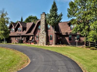 Three Lakes Single Family Home For Sale: 7065 Batogowski Dr