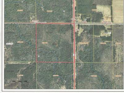 Antigo Residential Lots & Land For Sale: 40 Bear Lake Rd W