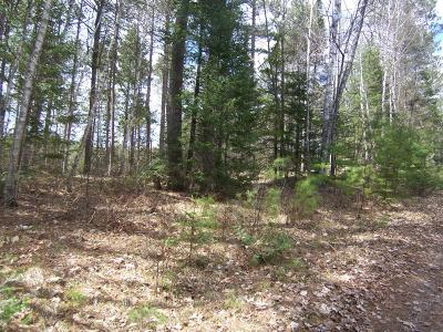 Residential Lots & Land For Sale: On Lake Agnes Rd