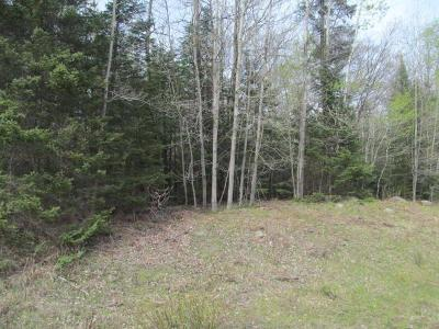 Antigo Residential Lots & Land For Sale: 40 Acres Bear Lake Rd