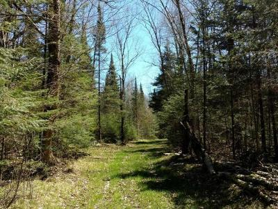 Price County Residential Lots & Land For Sale: 38 Acres Hackett Rd W