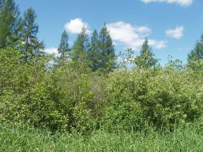 Glidden Residential Lots & Land Active Under Contract: On Kinney Rd