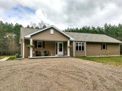Hazelhurst Single Family Home For Sale: 10368 Hughitt Lake Rd