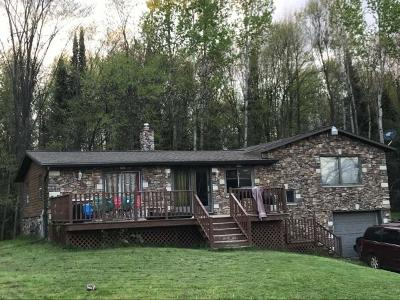 Crandon Single Family Home For Sale: 7087 Hwy 32