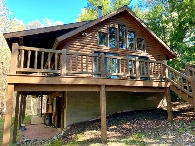 Langlade County, Forest County, Oneida County Single Family Home For Sale: 12328 Carter