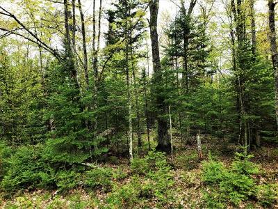 Winter Residential Lots & Land For Sale: Off Barker Lake Rd