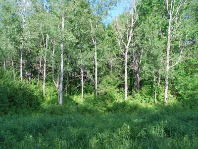 Residential Lots & Land For Sale: Lot #21 Glacier Ridge Rd