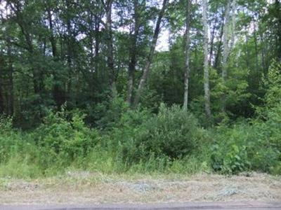 Winter Residential Lots & Land For Sale: On Butler Rd
