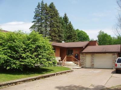 Park Falls Single Family Home For Sale: 895 7th Ave S