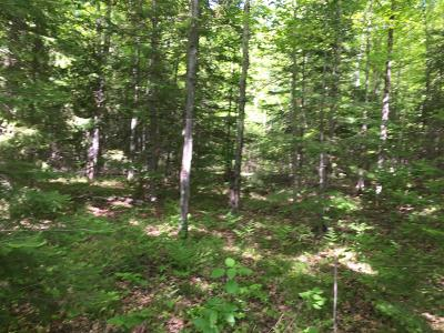 Oneida County Residential Lots & Land For Sale: On Manhardt Dr E
