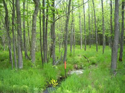 Prentice Residential Lots & Land Active Under Contract: On Mail Route Rd