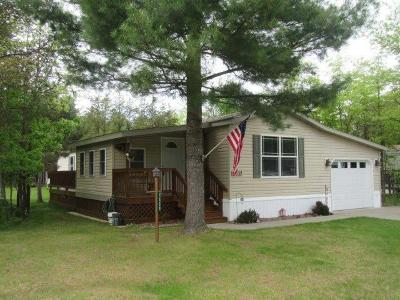 Arbor Vitae Single Family Home For Sale: 1325 Old Hwy 51