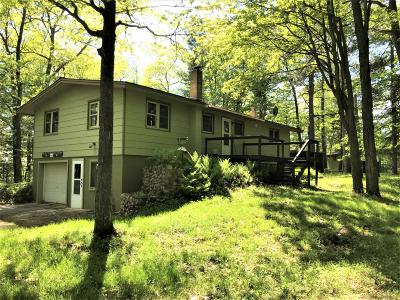 Langlade County, Forest County, Oneida County Single Family Home For Sale: 9542 South Blue Lake Rd