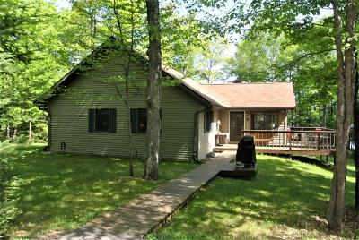 Langlade County, Forest County, Oneida County Single Family Home For Sale: 5856 Twin Lake Rd W