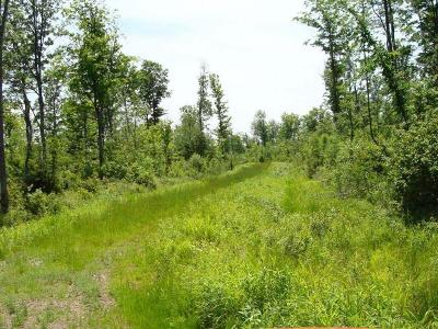 Antigo Residential Lots & Land For Sale: 320 Peterson Rd