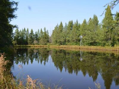 Oneida County, Lincoln County, Price County, Vilas County Residential Lots & Land For Sale: 120 Off Cth E