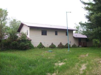 Price County Single Family Home For Sale: 2725 Flowage Rd N