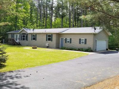 Lake Tomahawk Single Family Home For Sale: 8221 Heron Rd