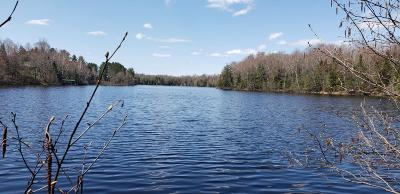 Vilas County Residential Lots & Land For Sale: 8282 East Bay Ln #Lot 1