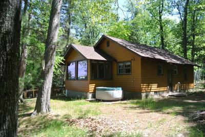Langlade County, Forest County, Oneida County Single Family Home For Sale: 12243 Carter Rd