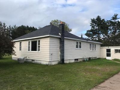 Tomahawk Single Family Home For Sale: N10812 Hagar Rd