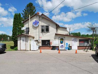 Hiles Commercial For Sale: 10779 Main St