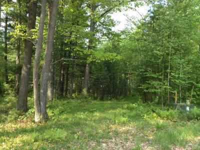 Rhinelander Residential Lots & Land For Sale: 3689 Sterling Dr