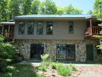 Presque Isle Single Family Home For Sale: 11072 Annabelle Shores Rd
